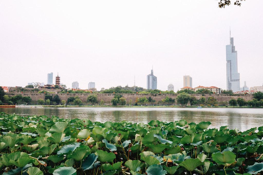 南京精华5日线路