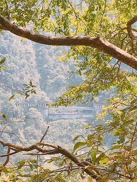谷关风景区的图片