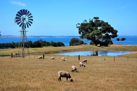 丘吉尔岛传统农场的图片