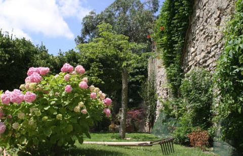 尼斯植物园的图片
