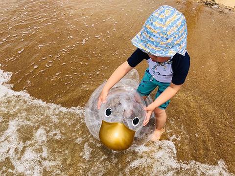 辽东湾金帛滩旅游区的图片