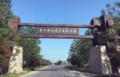 龙湾国家考古遗址公园的图片