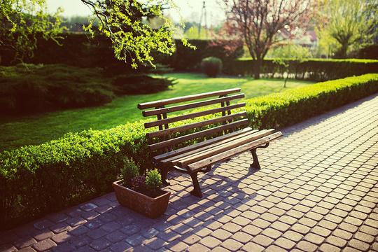 莫子山公园旅游景点图片