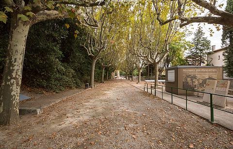 Les Alyscamps墓地