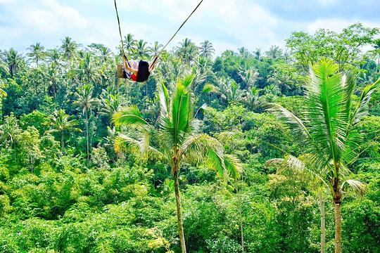 巴厘岛D'tukad秋千旅游景点图片