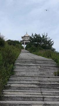 白草寺的图片