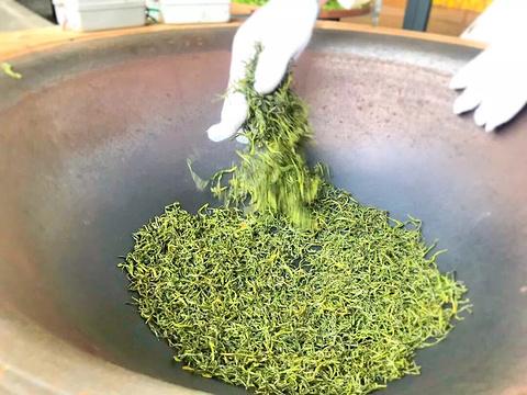 虔茶文化馆旅游景点图片