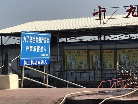 十九涌水产品交易码头(万顷沙十九涌)