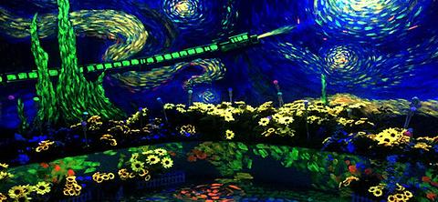 梵高星空艺术馆的图片