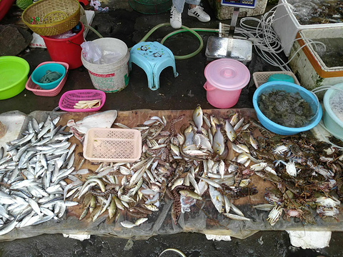 闸坡金海达农贸市场