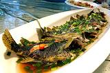 姜君·千岛湖鱼头馆