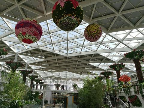 中央大道旅游文化购物中心