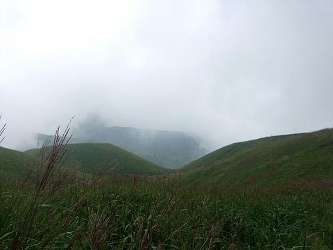 箕峰景区的图片