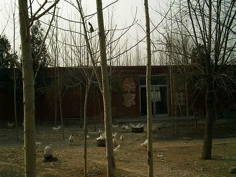 忻州貂婵故里的图片