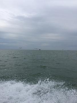 黄河口海水浴场