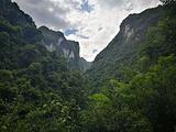 茂兰喀斯特森林保护区
