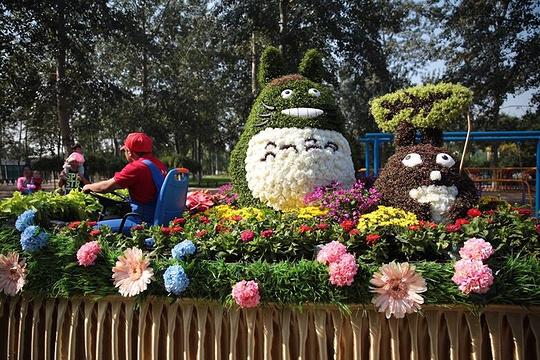 世界花卉大观园旅游景点图片