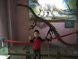 东阳博物馆