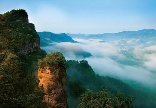 新昌硅化木国家地质公园旅游景点图片