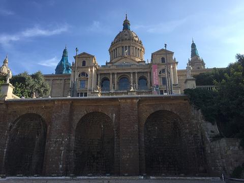 Museum of Archaeology of Catalonia (Museu Arqueologic de Catalunya)的图片