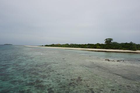 蒂姆巴 - 蒂姆巴岛
