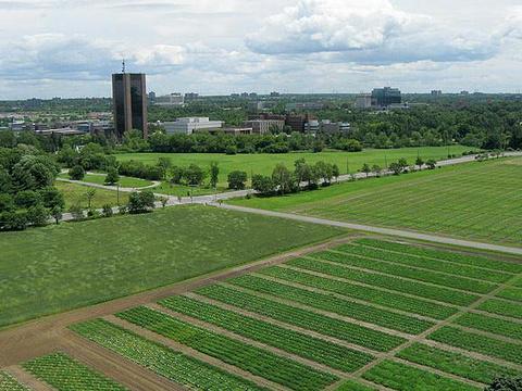 加拿大农业博物馆旅游景点图片