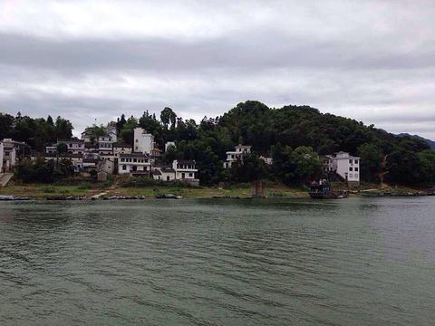 新安江国画长廊游船旅游景点图片