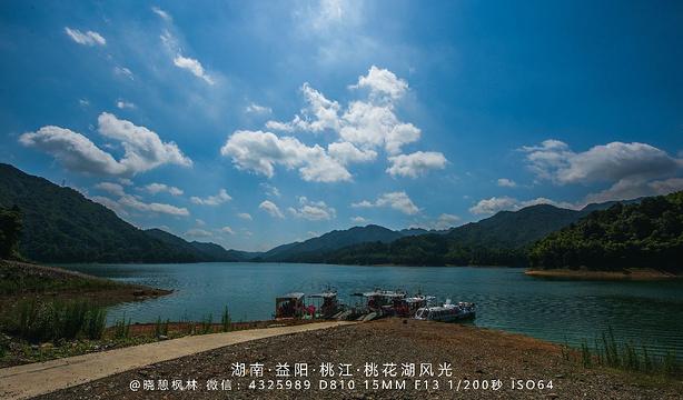 湖南桃花江国家森林公园旅游景点图片