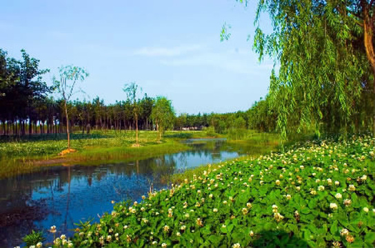 漳平南洋国家湿地公园旅游景点图片