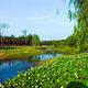 漳平南洋国家湿地公园