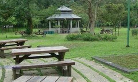 关渡自然公园的图片