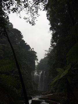 飞蛙崖瀑布的图片