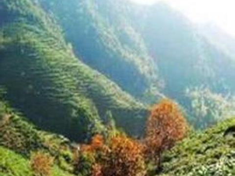 秦望山旅游景点图片
