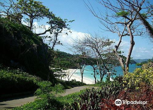 Lapuz-Lapuz Beach旅游景点图片