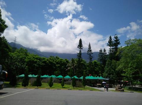 林田山的图片