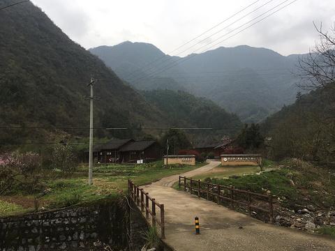 池州慈云禅寺的图片