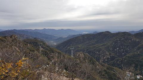双龙山森林公园的图片