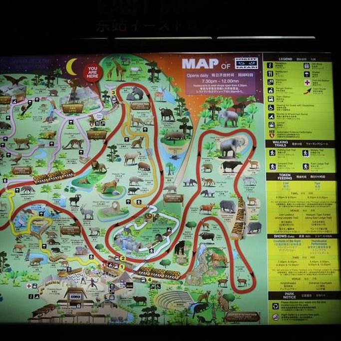 新加坡夜间野生动物园旅游导图