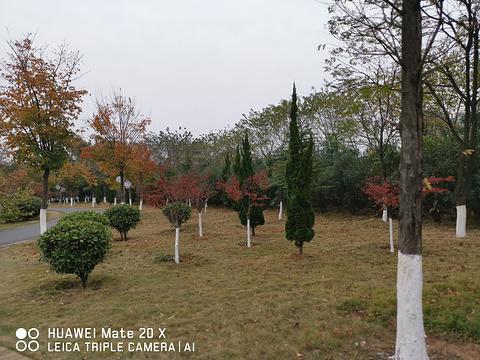 蒲阳绿荫公园(长荆公园)旅游景点图片