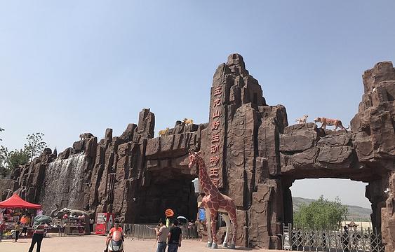 五龙山野生动物王国旅游景点图片