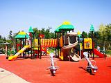 东丽湖生态健身公园