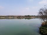 天福国家湿地公园