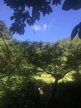 小溪的图片