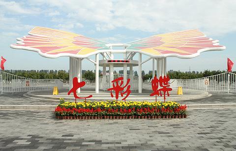 七彩蝶园的图片