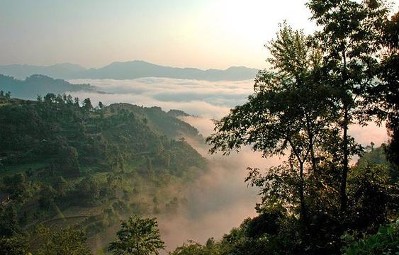 四野屯自然保护区旅游景点图片