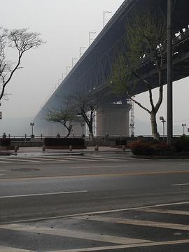 临江大道的图片