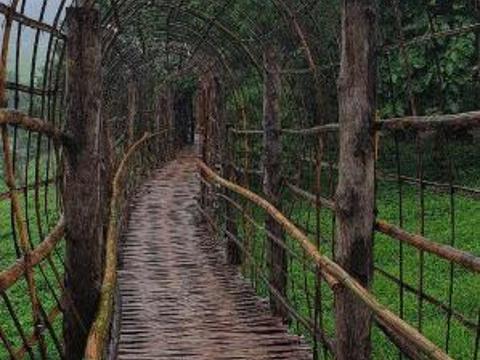 Sutongpe Bridge旅游景点图片