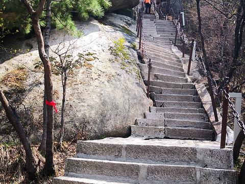 飞鱼岭旅游景点图片
