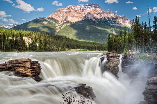 阿萨巴斯卡瀑布旅游景点图片