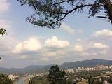 龙门县龙门分塔山省级森林公园